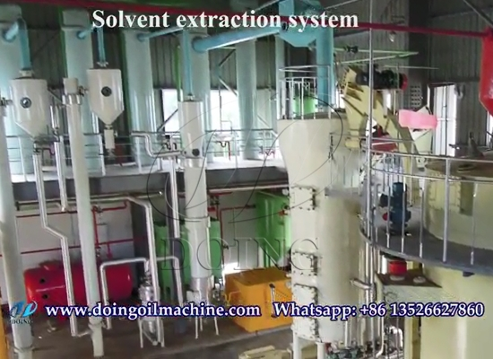 Sunflower oil solvent extraction plant project case showing video