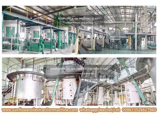 How to choose sunflower oil making machine manufacturers?