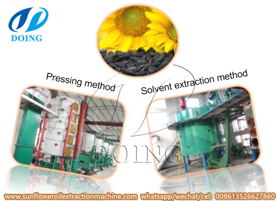 How is sunflower oil processed? What is the processing features?