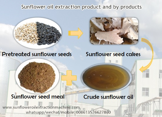 What are the products and by products in sunflower oil extraction process?