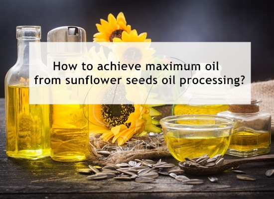 How to extract the most oil from sunflower seeds?