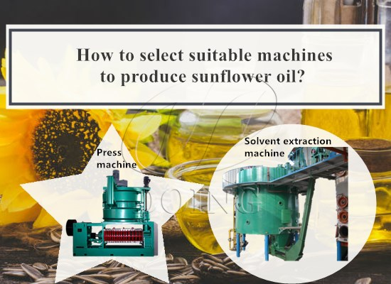 How to select suitable machines to produce sunflower oil?