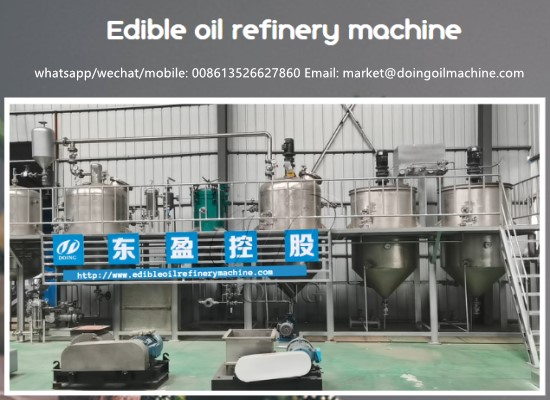 2tpd stainless steel small scale sunflower oil refinery machine and working process video