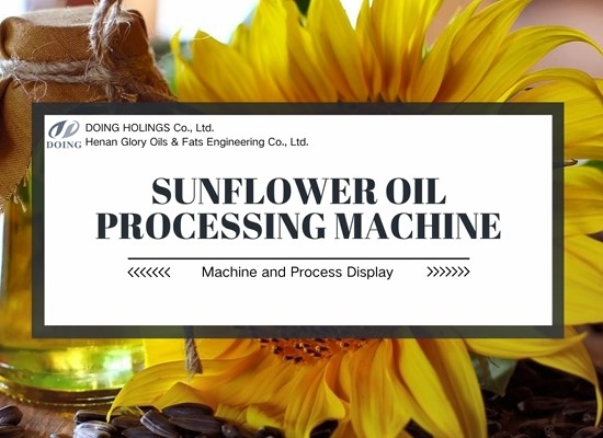 Machines used in large scale sunflower oil mill plant