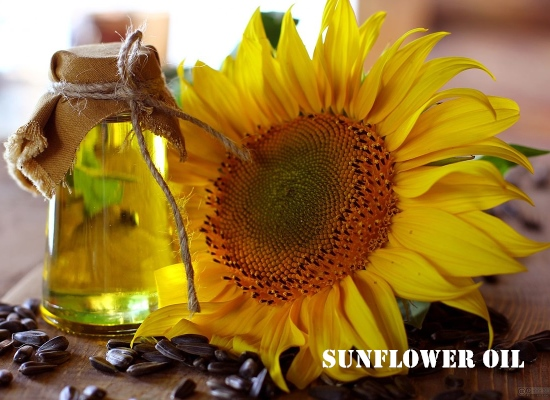 How to extract sunflower oil from sunflower seeds?
