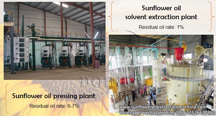sunflower oil production machine